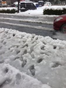 バス停前の雪